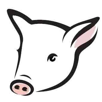 dibujo cerdo